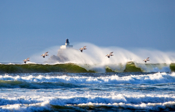 Big Waves, Ocean Spray, Pelicans & Lighthouse